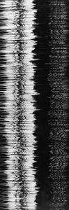 MUO-012361: Vibracija: fotografija