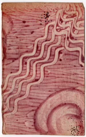MUO-003610: Knjigoveški papir: papir