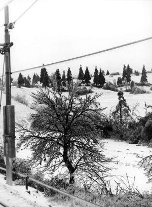 MUO-016986/09: Zima 2: fotografija