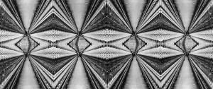 MUO-013047/02: Multiplikacija III: negativ