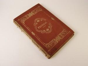 MUO-006121: Prevozač, historijska pripoviest od Antonije Klitsche de la Grange: knjiga