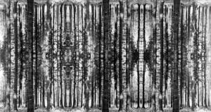 MUO-040013/02: Multiplikacija VII: negativ