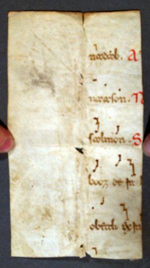MUO-006411/02: fragment kodeksa