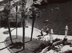 MUO-016981/05: U sjeni palmi: fotografija